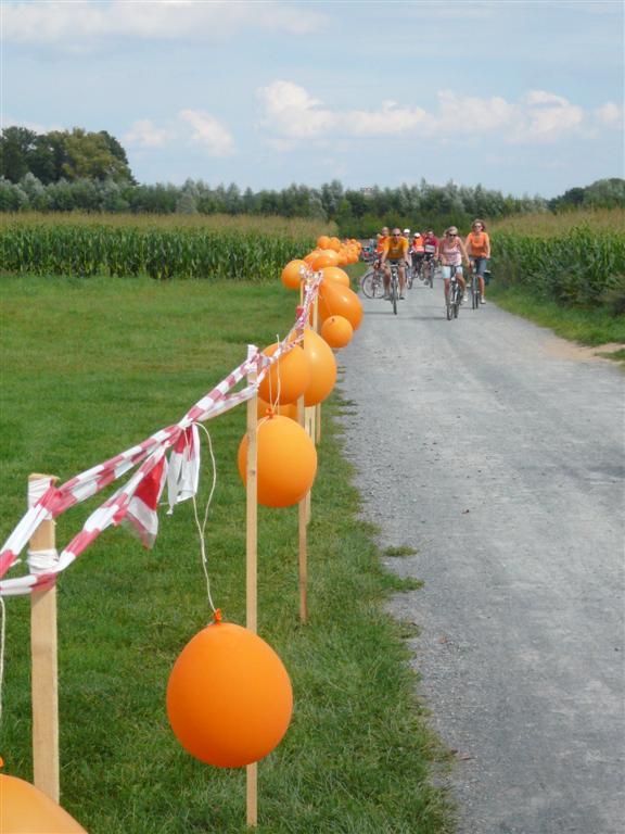 2010-flag-e-fahrradcoso-001-large