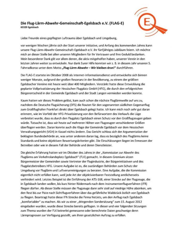 Info No 8_Dezember-2013_flag-e_Seite_1